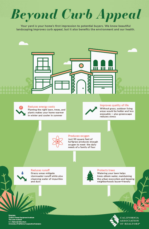 Info graphic about the importance of a well manicured lawn